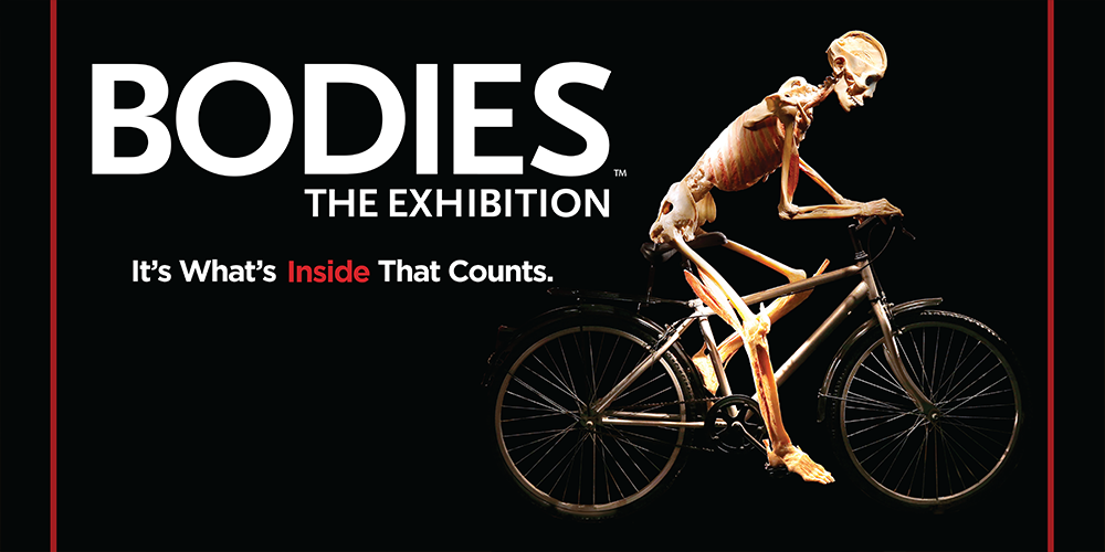Bodies... The Exhibition